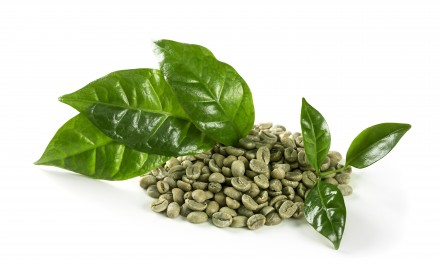 Green Coffee Bean Extract and Its Importance